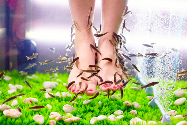 Importance Of Foot Spa
